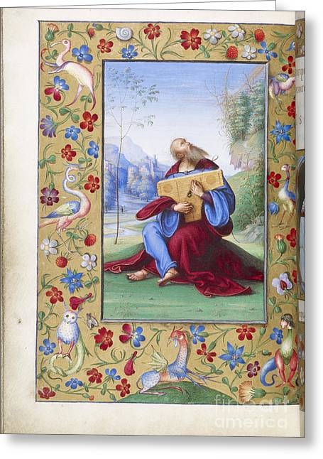 Playing Musical Instruments Greeting Cards - David Playing The Dulcimer Greeting Card by British Library