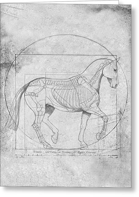 Da Vinci Horse Piaffe Grayscale Greeting Card by Catherine Twomey