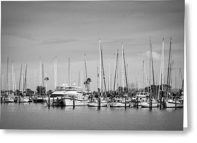 Yacht Basin Greeting Cards - Davis Island Yacht Club BW Greeting Card by Carolyn Marshall