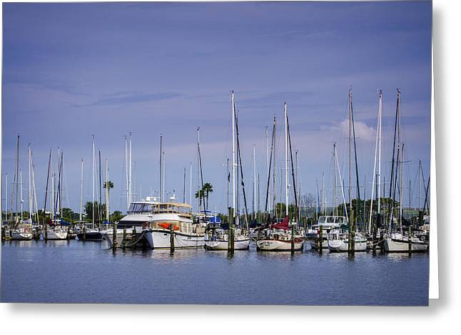 Yacht Basin Greeting Cards - Davis Island Yacht Club Greeting Card by Carolyn Marshall