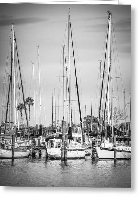 Yacht Basin Greeting Cards - Davis Island Yachts BW Greeting Card by Carolyn Marshall