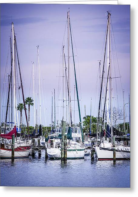 Yacht Basin Greeting Cards - Davis Island Yachts Greeting Card by Carolyn Marshall
