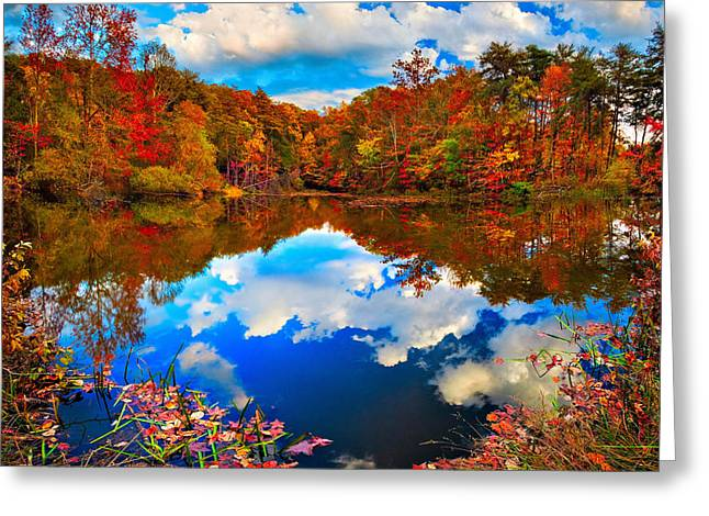 Chattanooga Greeting Cards - Davis Pond Reflections Greeting Card by Steven Llorca