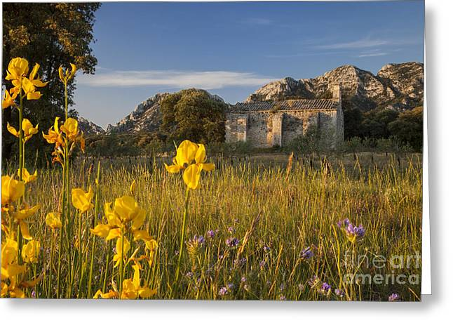 Saint-remy De Provence Greeting Cards - Dawn at Chapelle de Romanin Greeting Card by Brian Jannsen