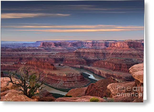 Layer Greeting Cards - Dawn at Dead Horse Point Greeting Card by Jerry Fornarotto
