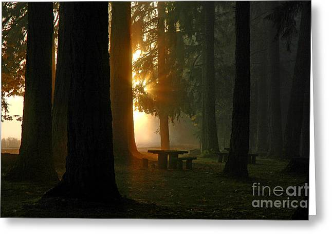 Boren Greeting Cards - Dawn At McKercher Park Greeting Card by Nick  Boren