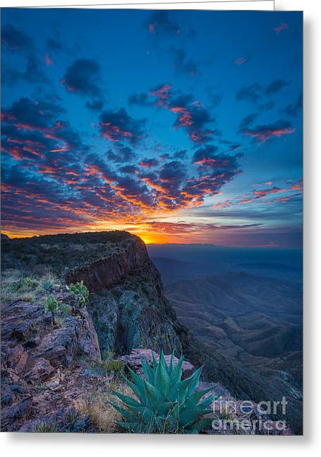South Rim Greeting Cards - Dawn in the Chisos Greeting Card by Inge Johnsson