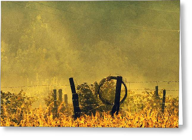 Sun Rays Paintings Greeting Cards - Dawn Lights On The Field Greeting Card by Odon Czintos