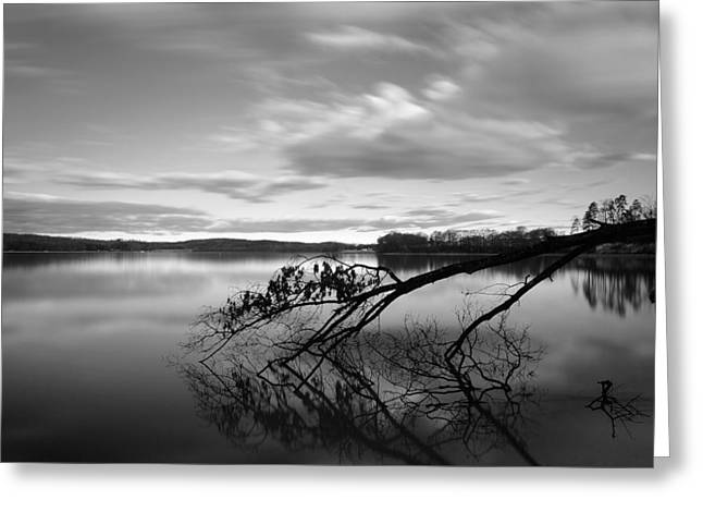 Clemson Greeting Cards - Dawn of Tranquility Greeting Card by Johan Hakansson