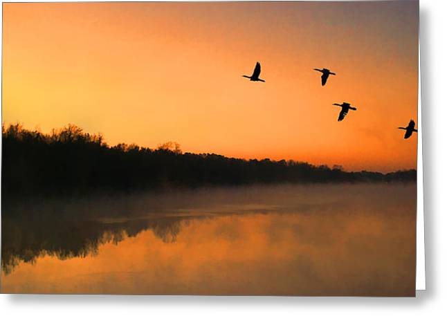 Lexington South Carolina Greeting Cards - Dawn Patrol Greeting Card by Steven Richardson