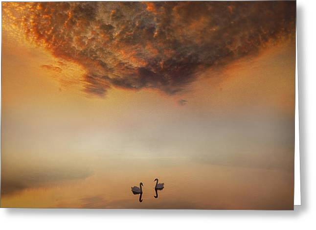 Muted Mauve Greeting Cards - Dawn Tranquility Greeting Card by Adrian Campfield