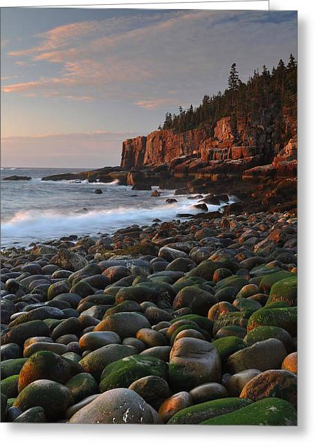 Mt Desert Island Greeting Cards - Dawns Early Light Greeting Card by Stephen  Vecchiotti