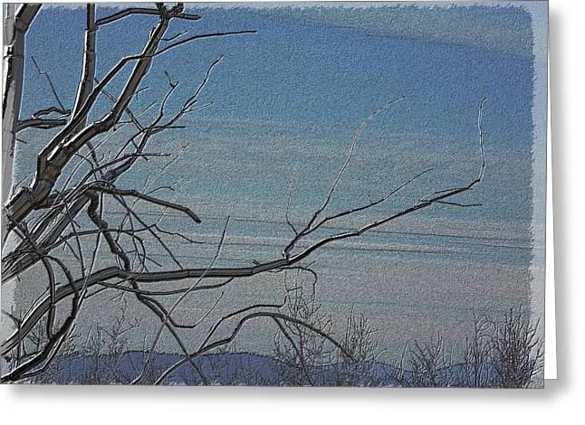 Light Blue Grey Greeting Cards - Dawns Early Light Greeting Card by Tim Allen