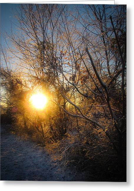 Winter Promise Greeting Cards - Dawns Promise Greeting Card by Jessica Brawley