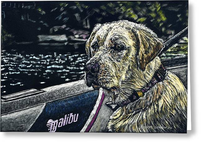 Dog In Lake Greeting Cards - Dawson at the Lake Greeting Card by Robert Goudreau