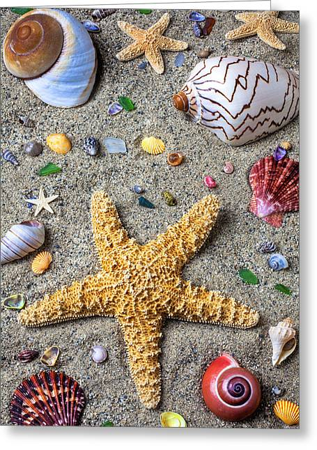 Starfish Greeting Cards - Day at the beach Greeting Card by Garry Gay