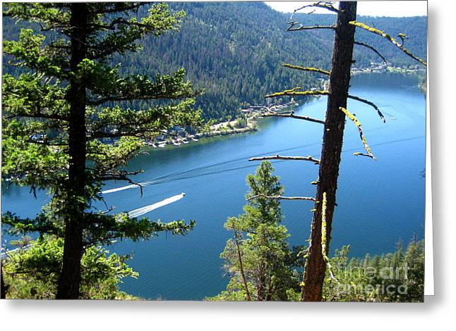 Birdseye Greeting Cards - Day at the Lake Greeting Card by Kathy Bassett