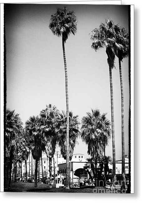 Venice Beach Palms Greeting Cards - Day at Venice Beach Greeting Card by John Rizzuto