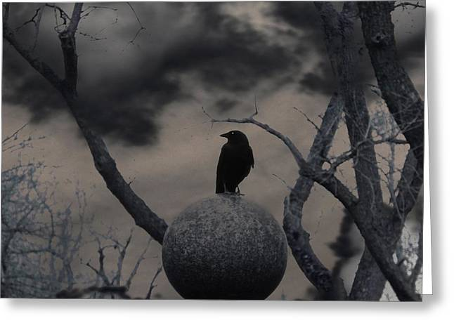 Gothicrow Greeting Cards - Day Dark As Night Greeting Card by Gothicolors Donna Snyder