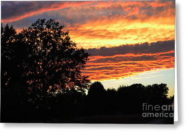 Fall Colors Greeting Cards - Day is Done Greeting Card by Luther   Fine Art