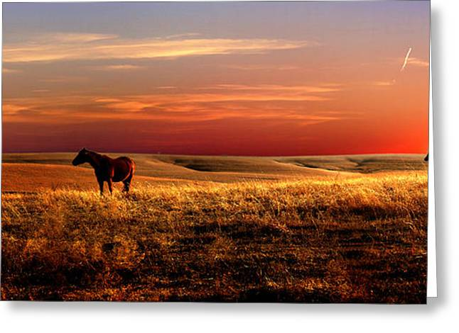 Most Favorite Photographs Greeting Cards - Day is Done Greeting Card by Rod Seel