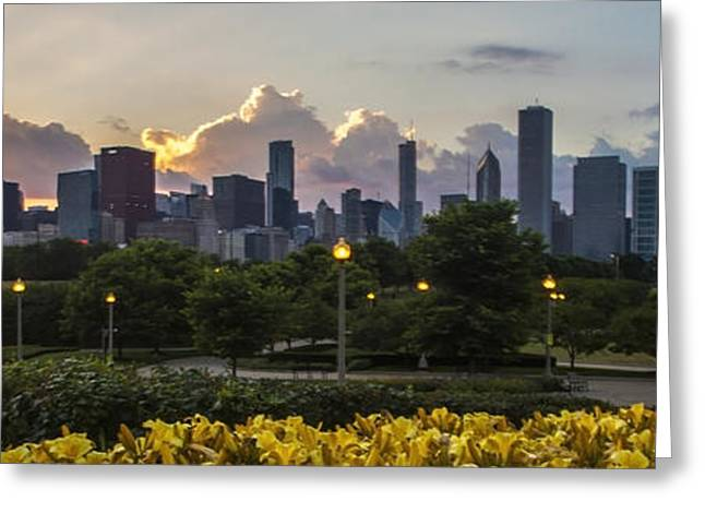 Yellow Sailboats Photographs Greeting Cards - Day Lilys and Chicago Skyline in a 3 to 1 aspect ratio Greeting Card by Sven Brogren