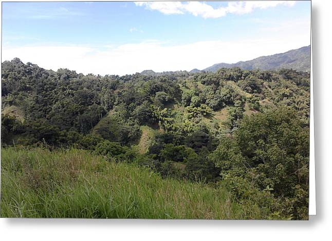 Green Day Greeting Cards - Day Landscape Greeting Card by Shanique Lewis