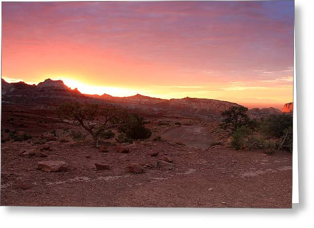 Scenic Drive Greeting Cards - Daybreak in the Utah Desert Greeting Card by Johnny Adolphson