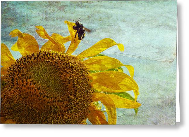 Textured Photograph Greeting Cards - Daydreaming Greeting Card by Toni Hopper