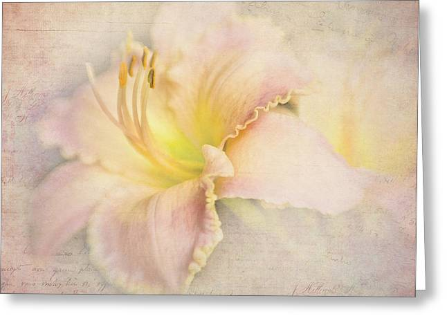 Day Lily Greeting Cards - Daylily Notes Greeting Card by David and Carol Kelly