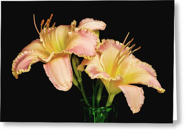 Day Lily Greeting Cards - Daylily Pair Greeting Card by David and Carol Kelly