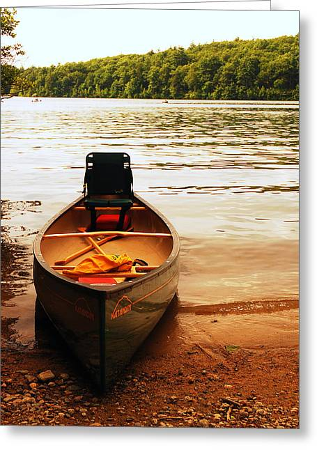 Concord Greeting Cards - Days End at Walden Pond Greeting Card by James Kirkikis
