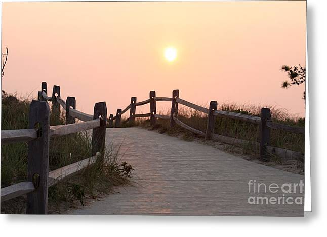Marconi Beach Greeting Cards - Days End Greeting Card by Jayne Carney