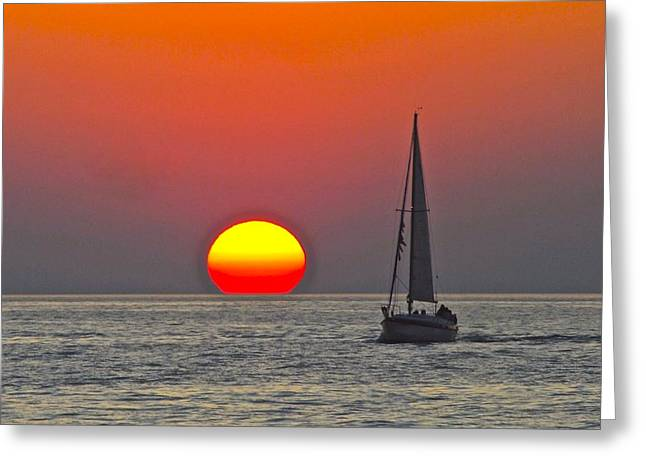 Flying Seagull Greeting Cards - Days End Greeting Card by Frozen in Time Fine Art Photography