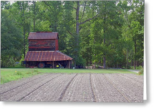 Tobacco Barns Greeting Cards - Days Gone By--Tobacco Barn Series  Greeting Card by Suzanne Gaff