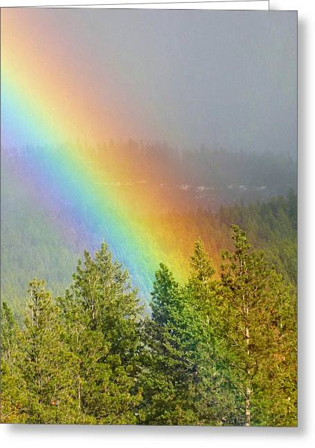 Dazzled Greeting Cards - Dazzling Rainbow Greeting Card by Will Borden