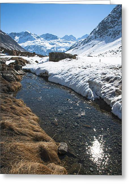 Graubunden Greeting Cards - Dazzling Stream at the Julier Pass Greeting Card by Michael Brewer