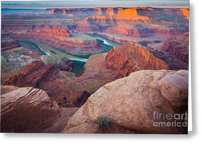 Twilight Views Greeting Cards - Dead Horse Point Dawn Greeting Card by Inge Johnsson