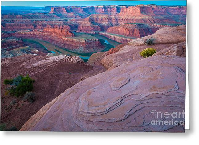 Twilight Views Greeting Cards - Dead Horse Point Greeting Card by Inge Johnsson