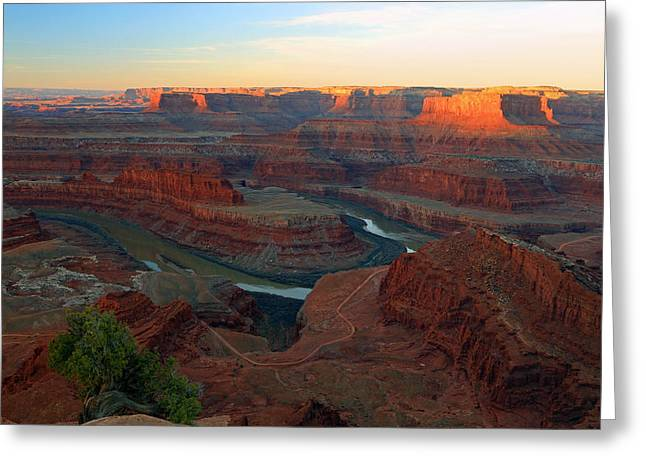 Dead Horse Point Greeting Cards - Dead Horse Point Greeting Card by Johnny Adolphson