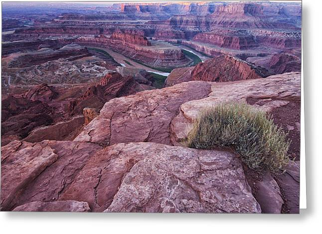 Dead Horse Point Greeting Card by Mark Kiver