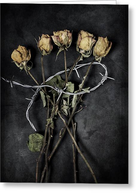 Dark Peak Greeting Cards - Dead Roses Greeting Card by Joana Kruse