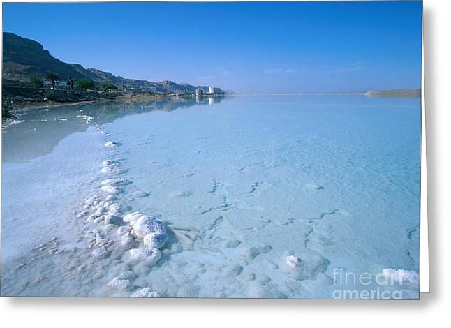 Dead Sea Greeting Cards - Dead Sea Of Israel Greeting Card by Paul Stepan