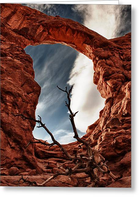 Colorful Cloud Formations Greeting Cards - Dead Tree at Turrent Arch Greeting Card by Juan Carlos Diaz Parra