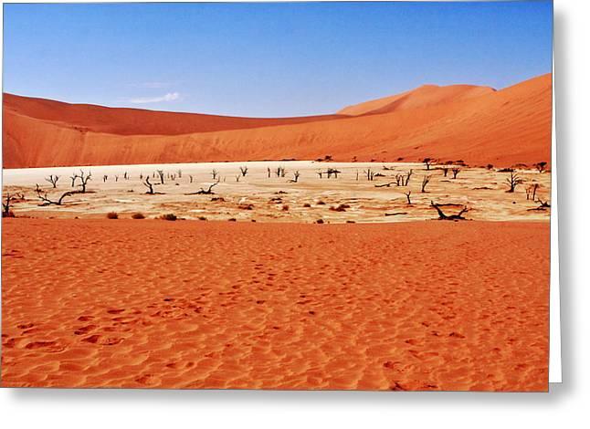Desert Prints Greeting Cards - Dead Vlei Sossusvlei Namibia Greeting Card by Aidan Moran
