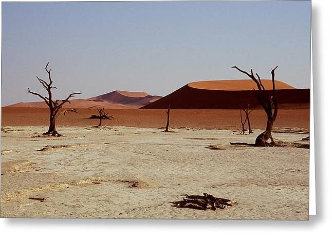 Stefan Carpenter Greeting Cards - Deadvlei 2 Greeting Card by Stefan Carpenter