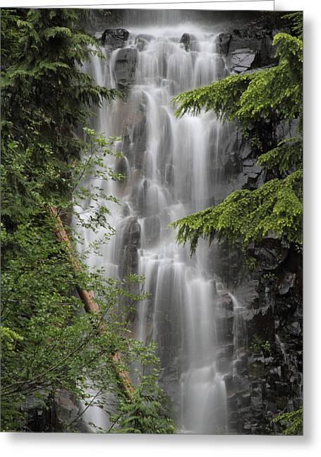 Deadwood Greeting Cards - Deadwood Creek Waterfall Greeting Card by Angie Vogel