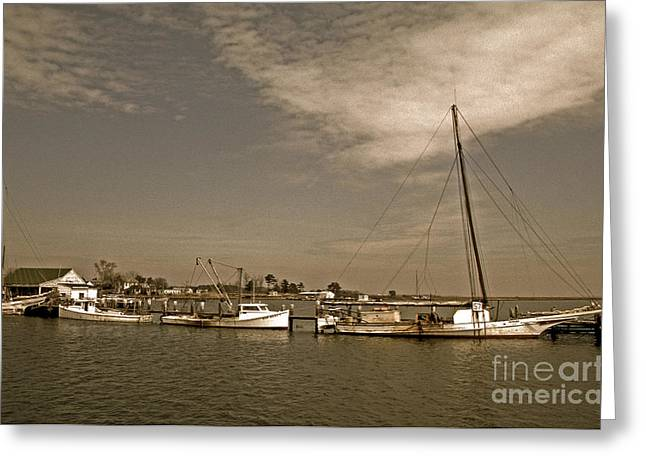 Sailboat Photos Greeting Cards - Deal Island Fishing Boats Greeting Card by Skip Willits