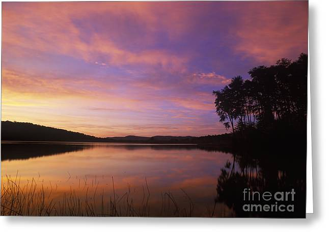 Rural Indiana Greeting Cards - Deam Lake Dawn - FM000086 Greeting Card by Daniel Dempster