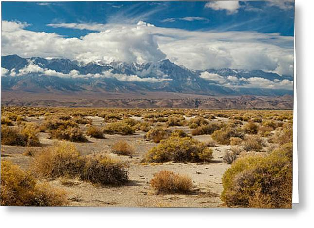 Death Valley Landscape, Panamint Range Greeting Card by Panoramic Images